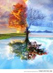 tree-art-four-seasons