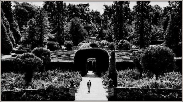 Escaping the Maze by Matt Baldwin-Ives