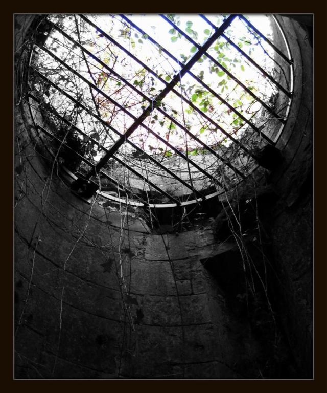Soul Cages by Matt Baldwin Ives