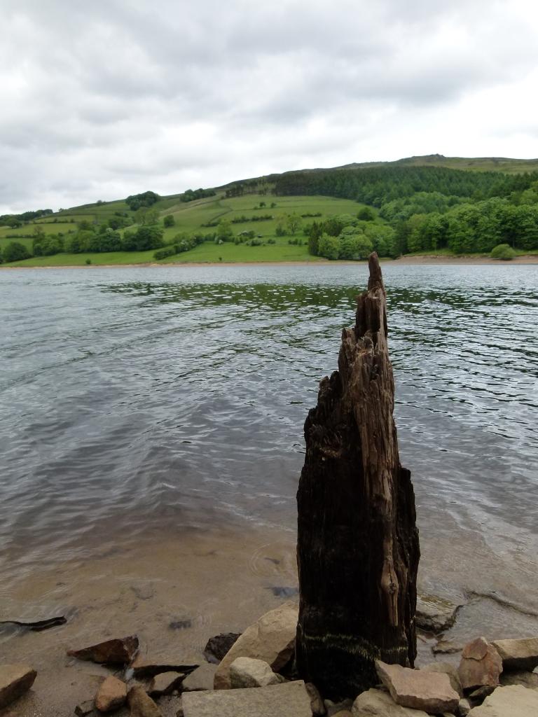 reservoirs 104