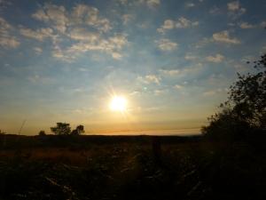 14 Derbyshire (9)