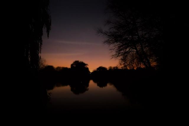 silhouette by Nick Verron