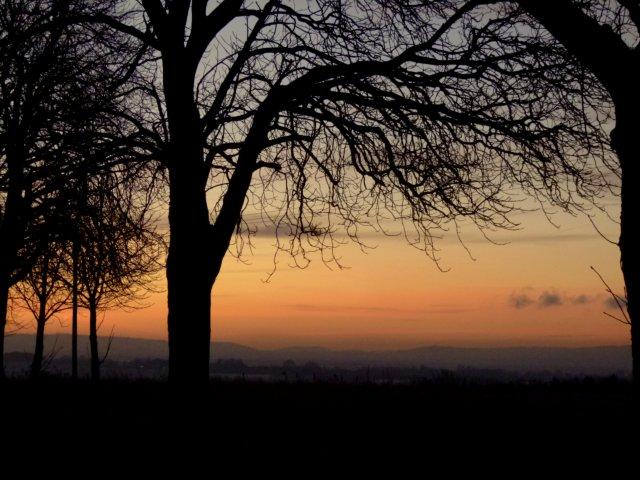dawn 019