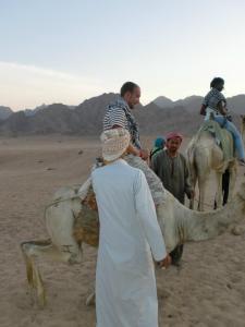 Alex and camel