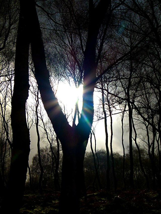 Arbor Low and Stanton Moor Imbolc 001 (125)