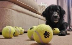 balls 012 (2)