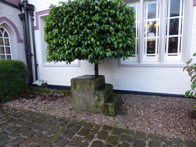 Old mounting block, Disley