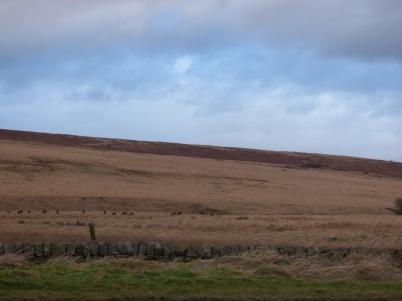 scotland trip jan 15 135