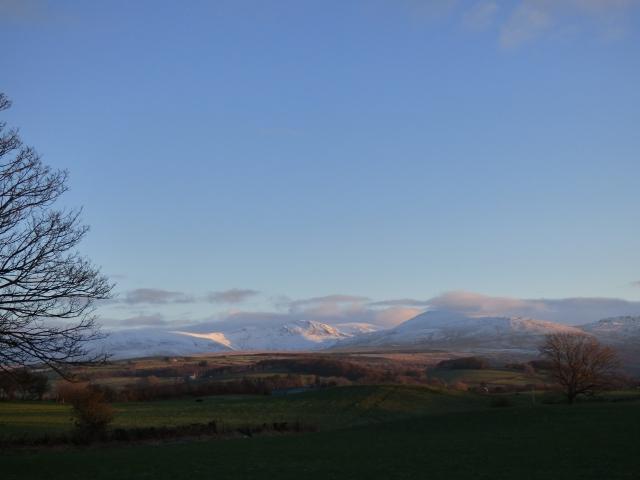 scotland trip jan 15 050