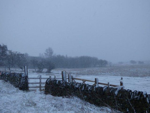 snow weekend 001