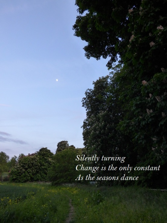 Silently turning Change is the only constant As the seasons dance