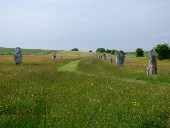 Avebury SE weekend 973