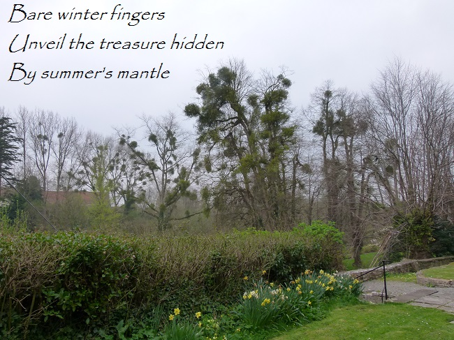 Bare winter fingers Unveil the treasure hidden By summer's mantle