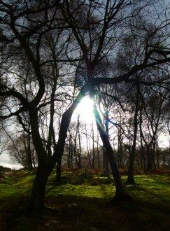 Arbor Low and Stanton Moor Imbolc 001 (122)