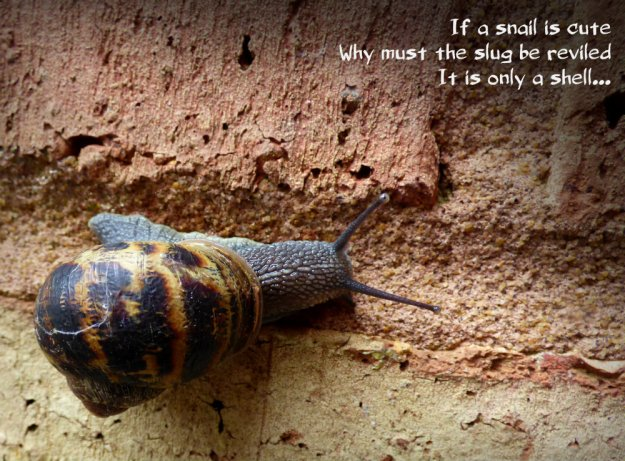 If a snail is cuteWhy must the slug be reviledIt is only a shell...