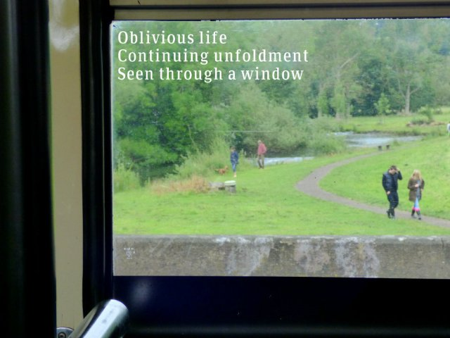 Oblivious lifeContinuing unfoldmentSeen through a window
