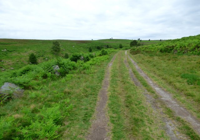stone row, barbrook  derbyshire  (1)