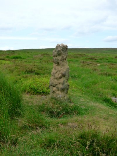barbrook  merlin stone beeley derbyshire  (12)