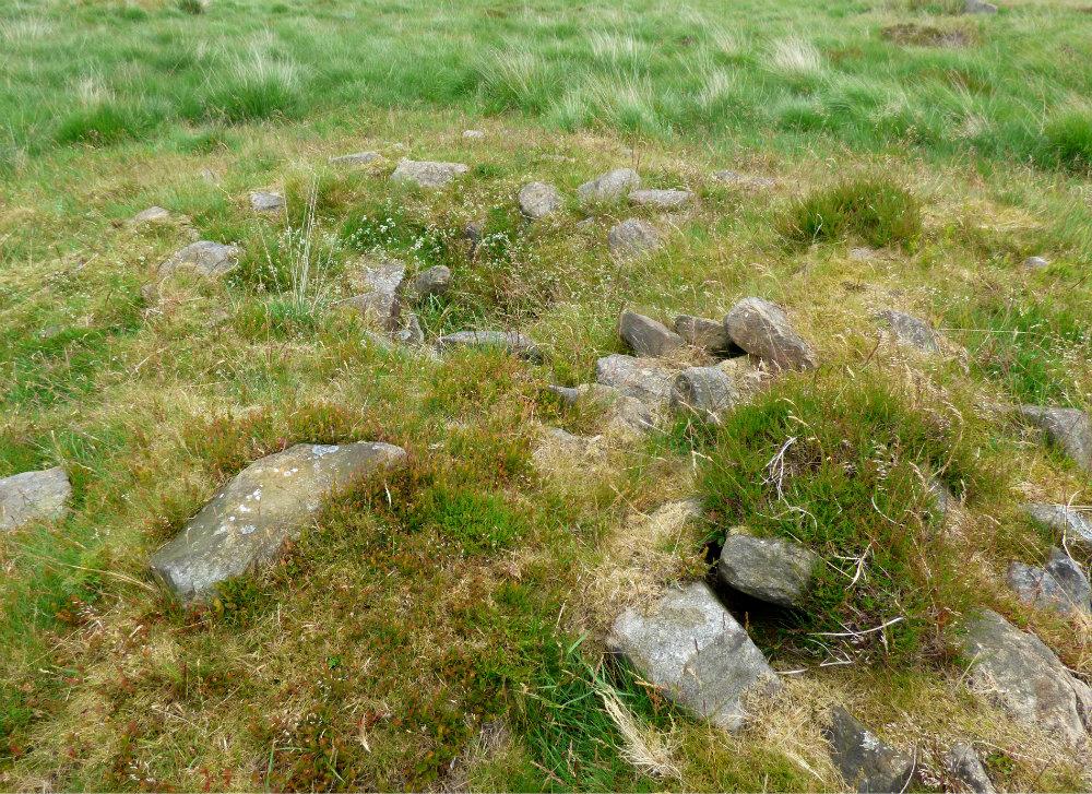 snake adder barbrook merlin stone beeley derbyshire (17)