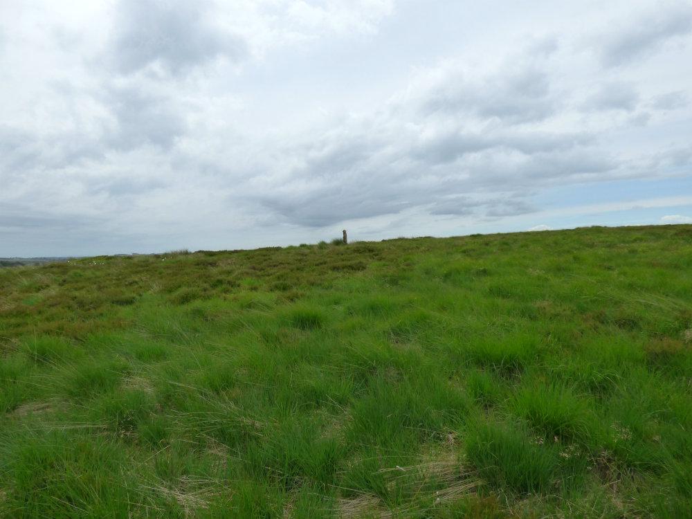 barbrook merlin stonederbyshire (8)