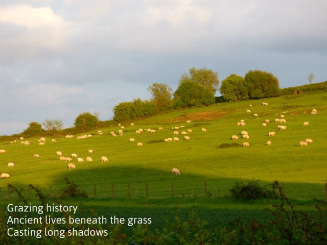 Grazing history Ancient lives beneath the grass Casting long shadows