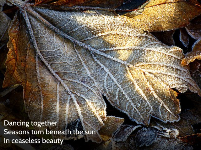 Dancing together Seasons turn beneath the sun In ceaseless beauty