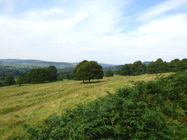 heather 2015 derbyshire, higger tor, beeley circle, edensor, bak 057