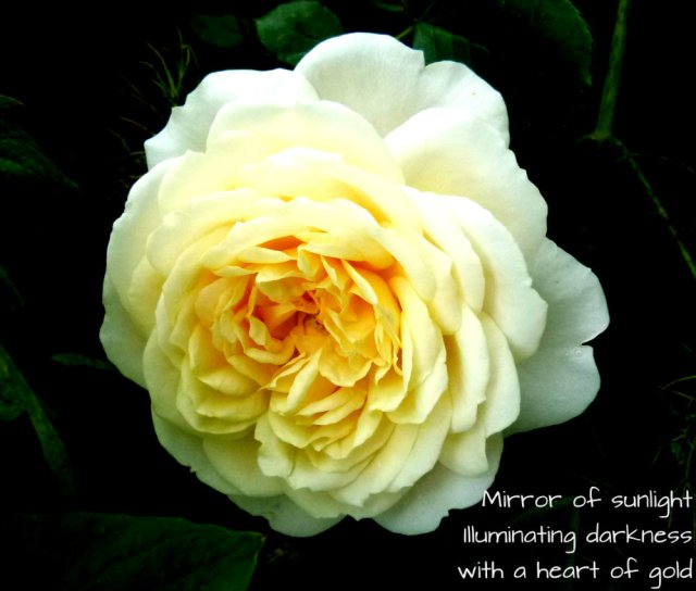 Mirror of sunlight Illuminating darkness with a heart of gold