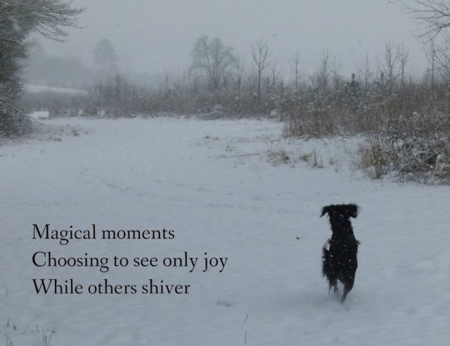 Magical moments Choosing to see only joy While others shiver