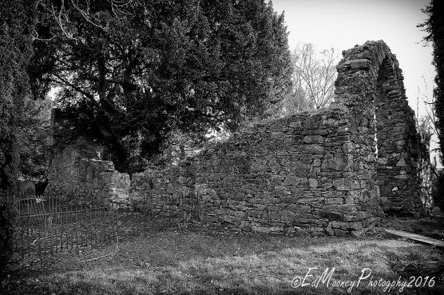 Fraoch Oileán and the Knights Hospitallers (4)