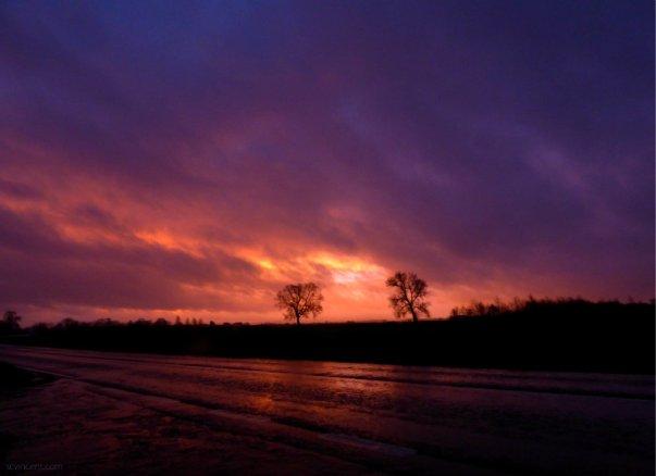 jan wet dawn 002