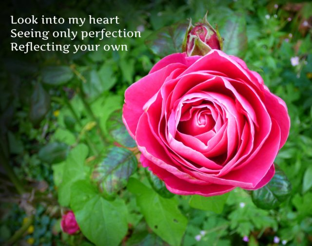 Look into my heart Seeing only perfection Reflecting your own