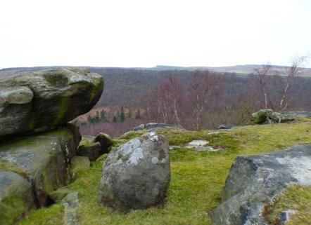 derbyshire lambs hawk kestrel crone stone tideswell lillingstone 011