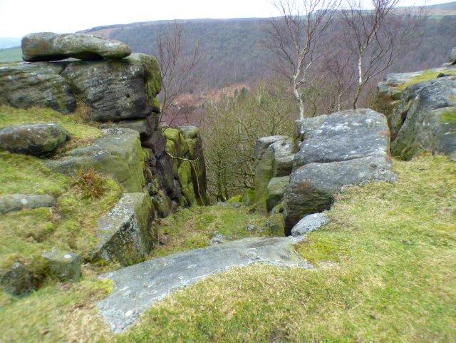 derbyshire lambs hawk kestrel crone stone tideswell lillingstone 019