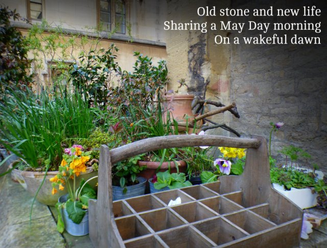 Old stone and new life Sharing a May Day morning On a wakeful dawn
