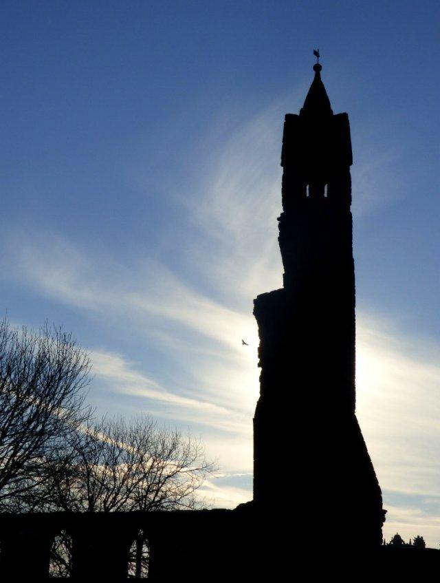 scotland trip jan 15 107