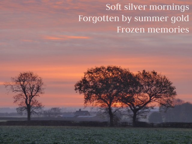 Soft silver mornings Forgotten by summer gold Frozen memories