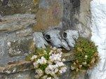 stu's carl wark standing cross castleton black shade pics 124
