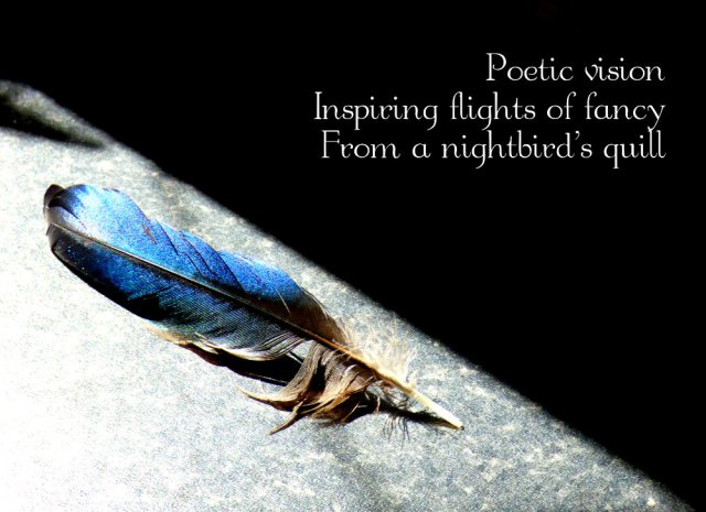 Poetic vision Inspiring  flights of fancy From a nightbird's quill