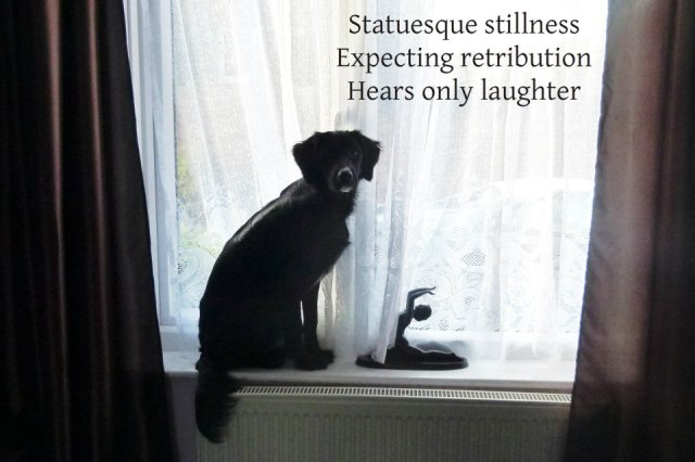 Statuesque stillness Expecting retribution Hears only laughter