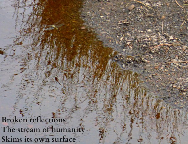 broken-reflections-the-stream-of-humanity-skims-its-own-surface
