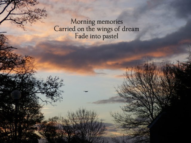 morning-memories-carried-on-the-wings-of-dream-fade-into-pastel