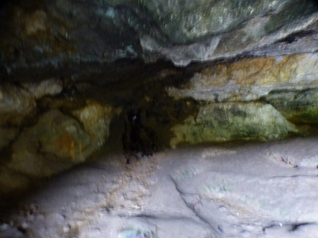 cave-creature