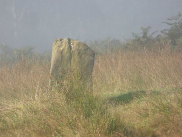 standing stone in the mist
