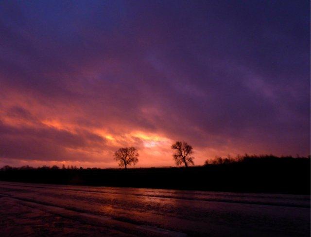 dark-dawn