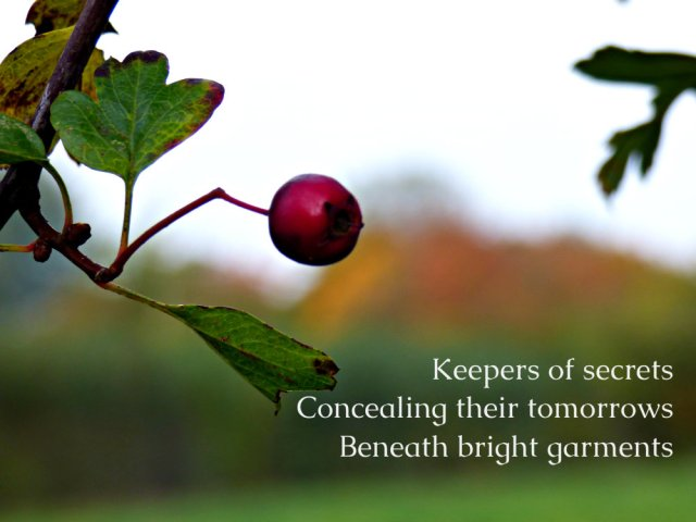 keepers-of-secrets-concealing-their-tomorrows-beneath-bright-garments