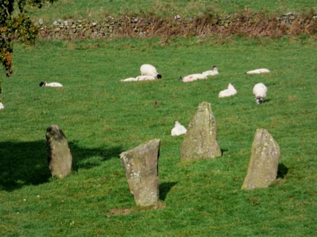 sheep-hordrons-nine-stones-robin-hoods-100