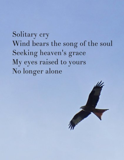 solitary-cry-wind-bears-the-song-of-the-soul-seeking-heavens-grace-my-eyes-raised-to-yours-no-longer-alone