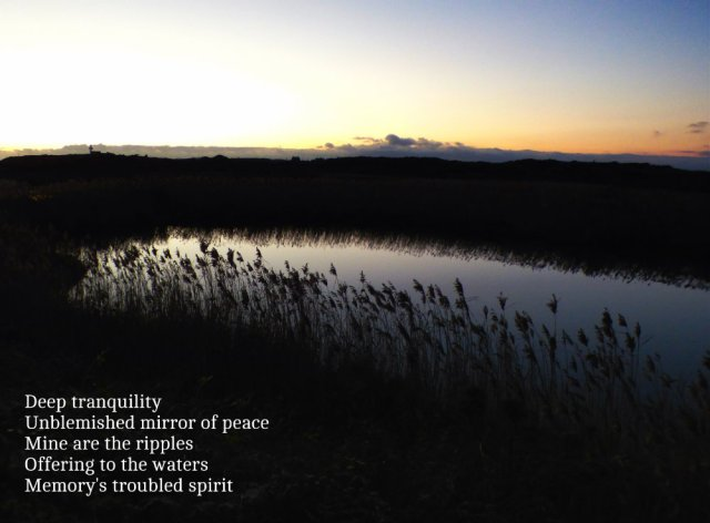 deep-tranquility-unblemished-mirror-of-peace-mine-are-the-ripples-offering-to-the-waters-memorys-troubled-spirit