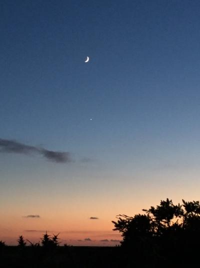 moon-over-venusaa